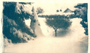 Toned Cyanotype of Snow Day
